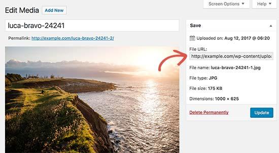 Cómo agregar un efecto de paralaje en cualquier tema de WordPress ...
