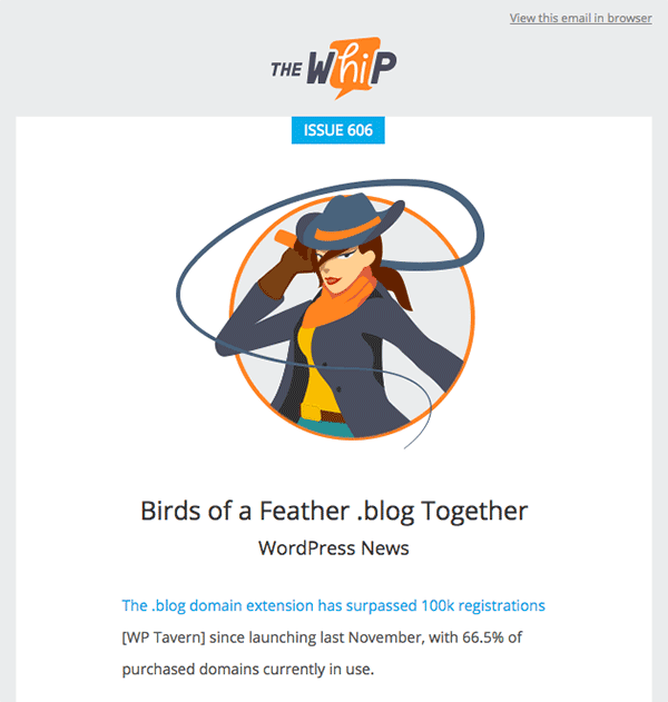 Newsletter exemple wordpress