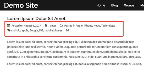 afficher les métadonnées du blog - Site demo wordpress meta données