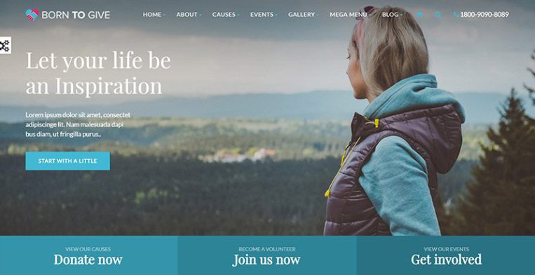 Born To Give Themes Wordpress Creer Site Web Collecte Dons Crowdfunding