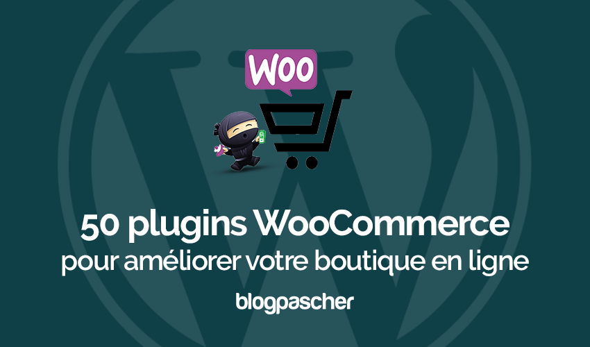 Plugins Woocommerce Ameliorer Boutique En Ligne