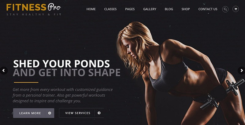 Fitnesspro Themes Wordpress Creer Site Web Club Fitness