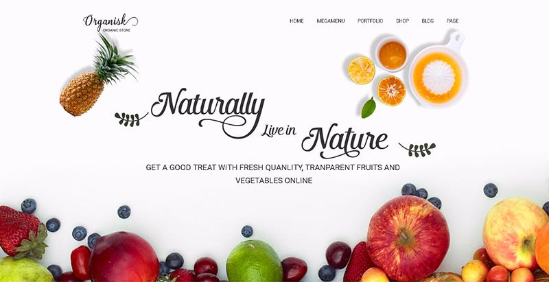 Organisk themes wordpress vendre produits internet boutique en ligne
