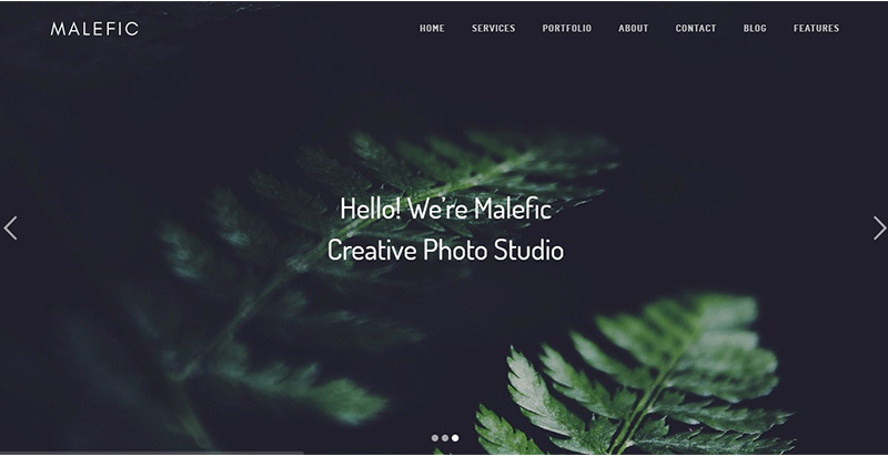 Malefic themes wordpress creation site web photographe portfolio studio photo