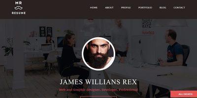 10 Thèmes WordPress Pour Créer Un Site Web De CV