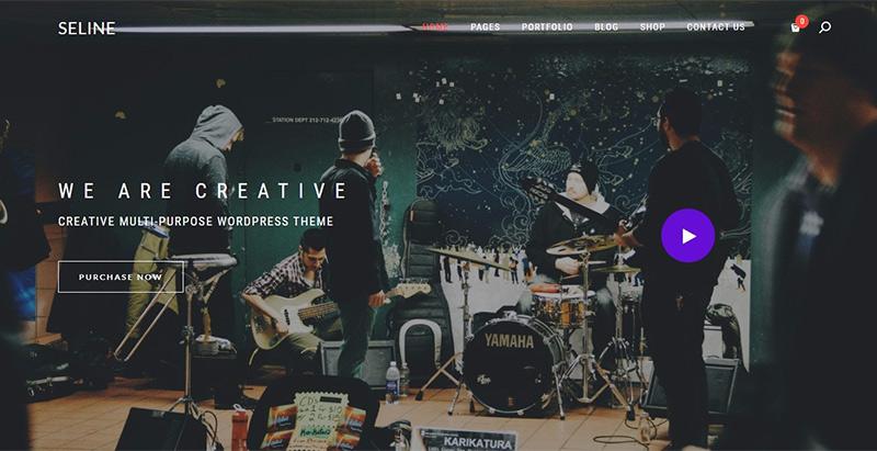 Seline themes wordpress creer site internet photographe portfolio image