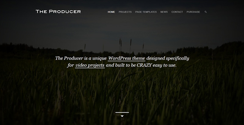 10 wordpress themes to create a website for movie blogpascher 7 the producer maxwellsz