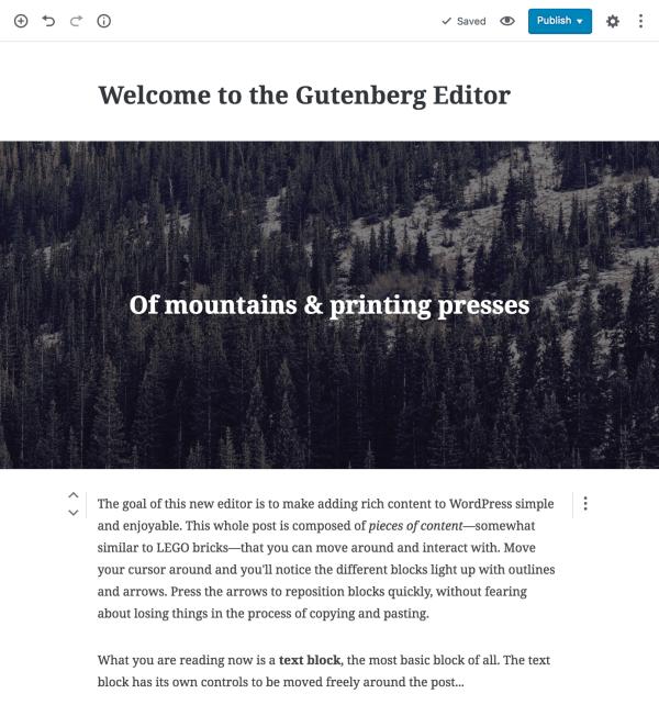 réséentation d'un article fait avec gutenberg.png
