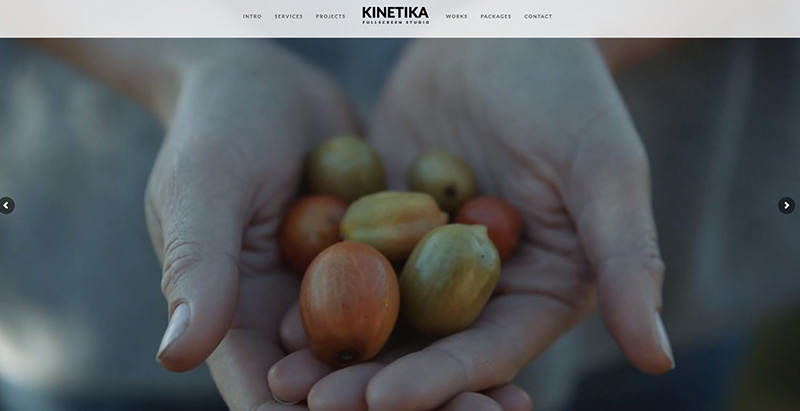 Kinetika themes wordpress creer site web photographe creative