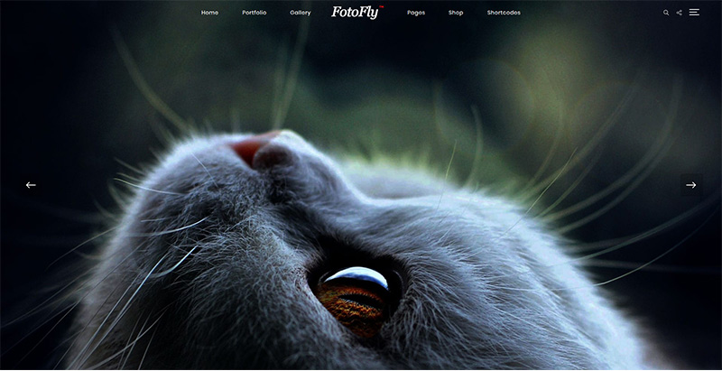 Fotofly Themes Wordpress Creer Site Web Photographe Illustrateur Designer