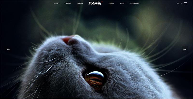 Fotofly themes wordpress creer site web photographe illustrateur designer