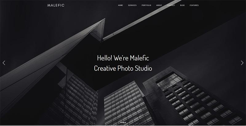 Malefic themes wordpress creer site web portfolio photographe artiste