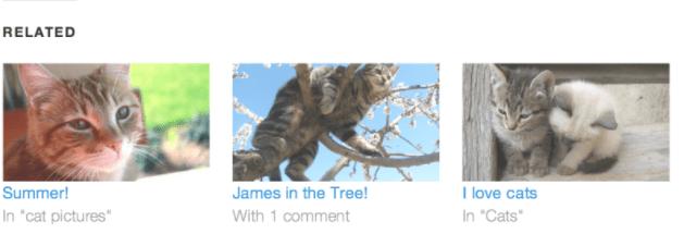 plugin do jetpack WordPress.png