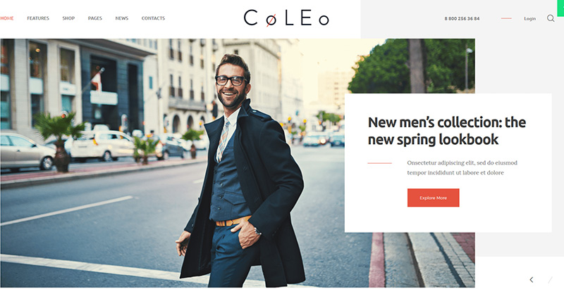 Coleo themes wordpress creer site internet ecommerce boutique en ligne