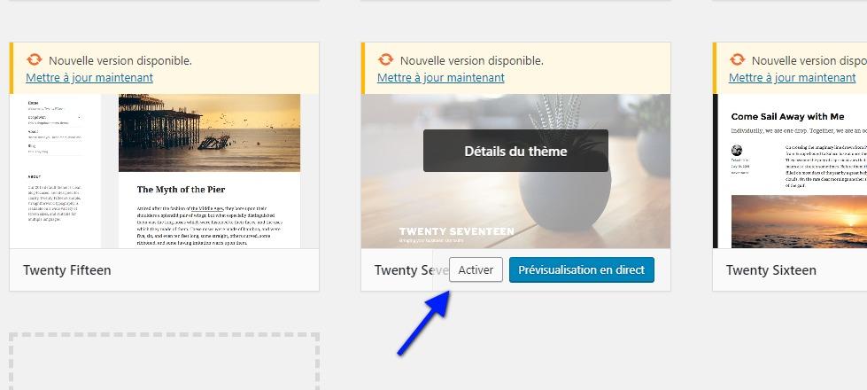 escolher um tema para WordPress por default.jpeg