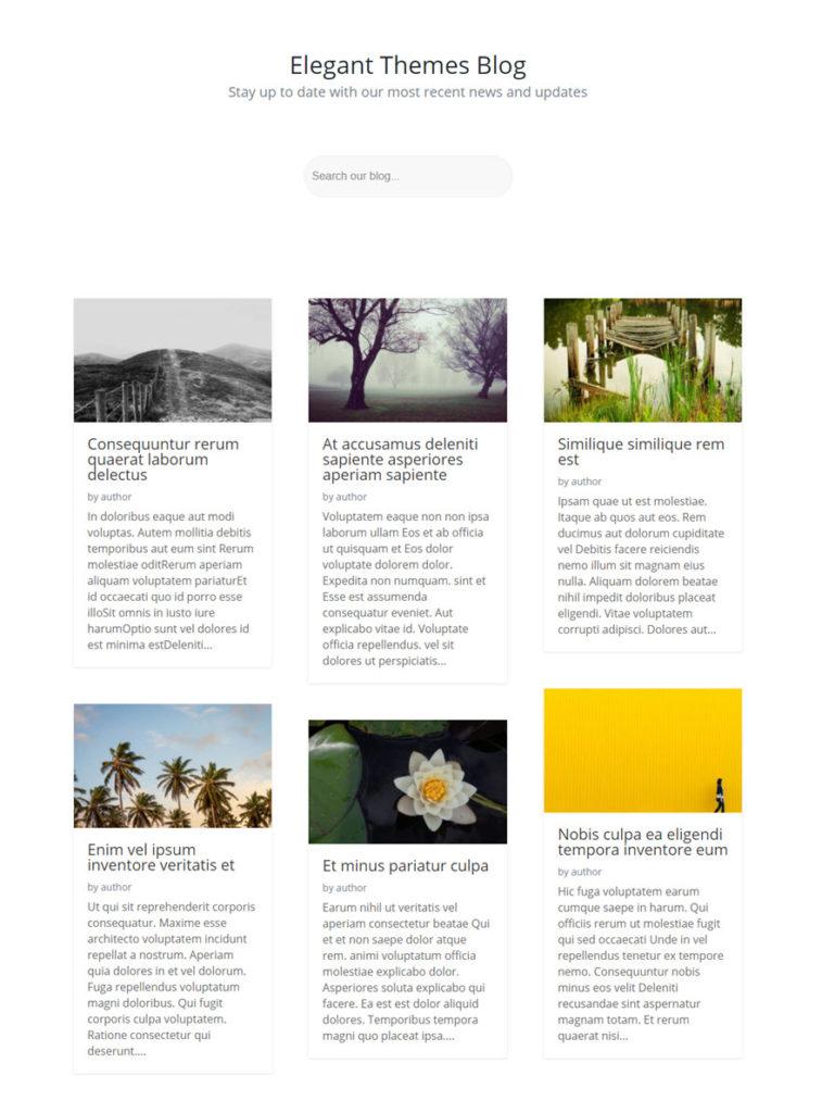 contoh blog dengan form pencarian divi.jpg