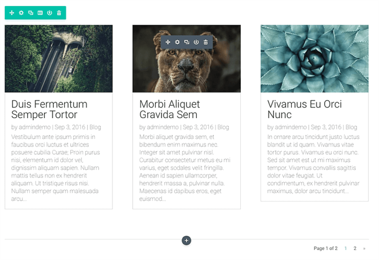 preview blog divi module blog.png