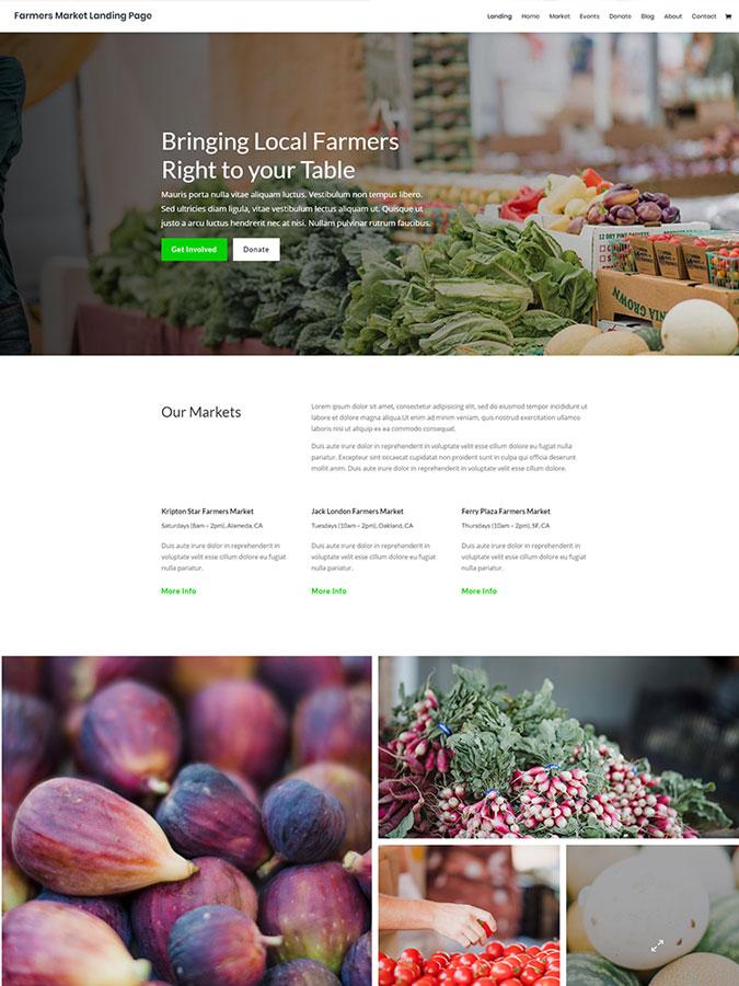 Template modèle divi thème wordpress créer site web agriculture bio aliments
