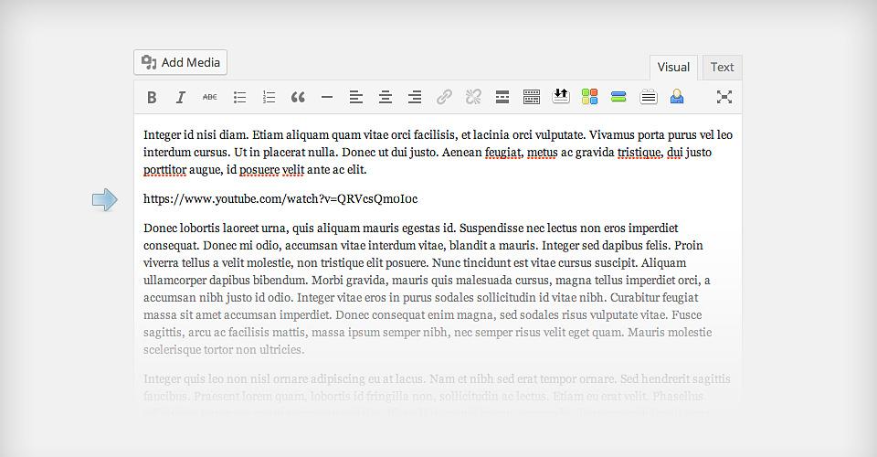 добавить видео wordpress editeur.jpg