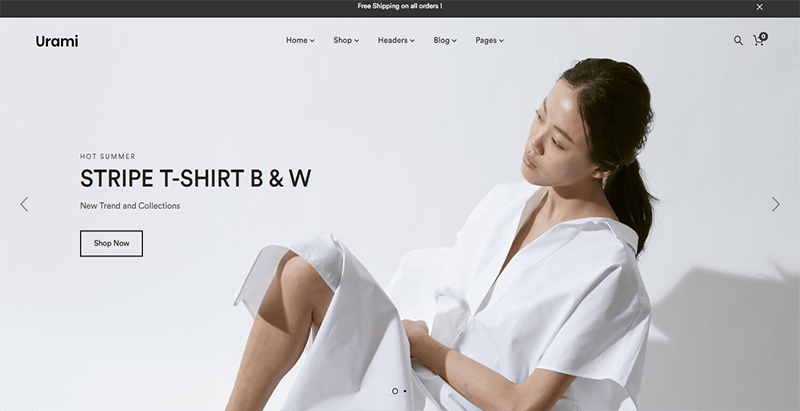 d558dfd2dea6d6 10 WordPress Themes para criar um site de vendas online | BlogPasCher
