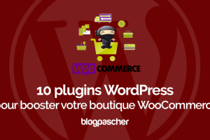 Plugins Wordpress Booster Boutique Woocommerce Wordpress