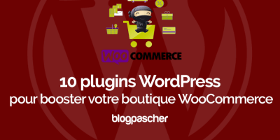 Plugins Wordpress Booster Boutique Woocommerce Wordpress