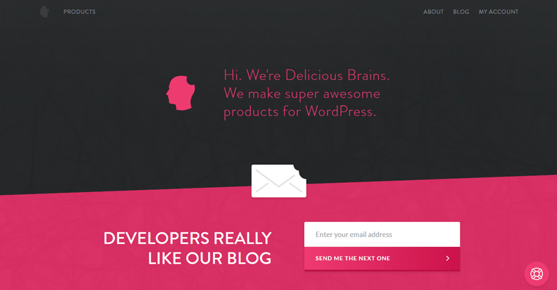 Ressources utiles developpeurs delicious brain blogpascher