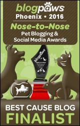 BlogPaws 2015 Nose-to-Nose Awards Finalist badge