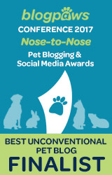 2017 BlogPaws Nose-to-Nose - BEST UNCONVENTIONAL PET BLOG FINALIST badge