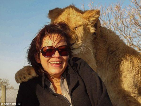 母獅貼近女遊客脖子、勾肩搭背一起入鏡