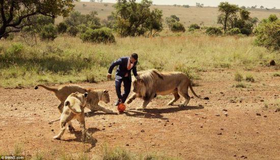凱文‧李察森與野獅踢足球
