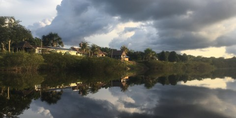 Welcome to the Jungle: 8 Days at Tahuayo Lodge in the Peruvian Amazon