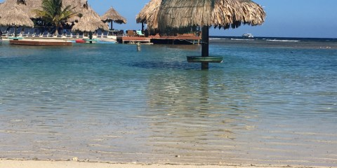 Visit Roatan! Don't just Cruise in, Stay Over!