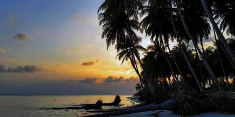 Video guide: How to start planning your Lakshadweep holiday