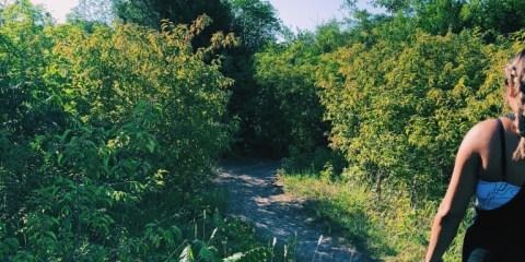 Katie Jackson Park trail review