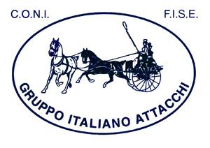 gruppo italiano logo