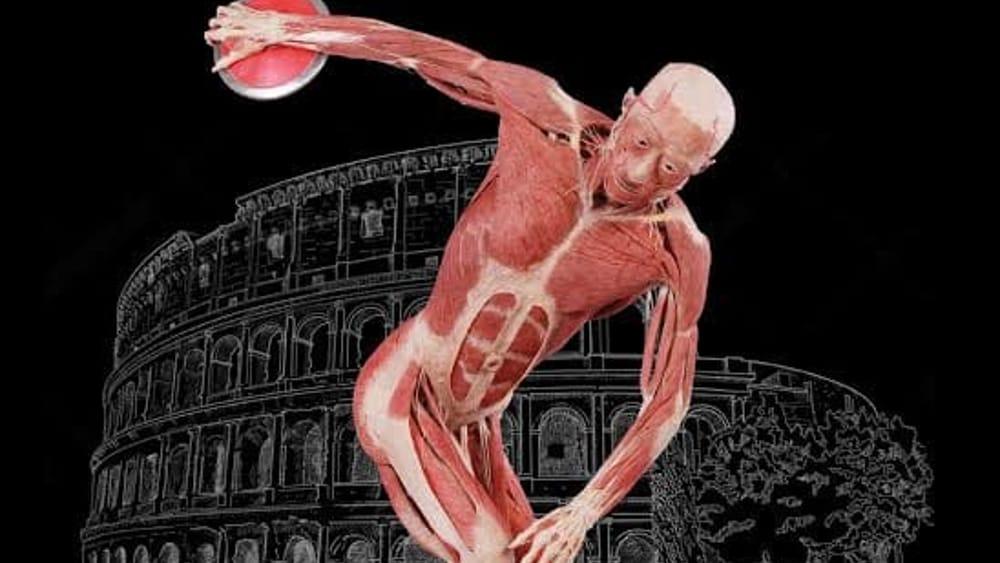 real bodies-2.jpg