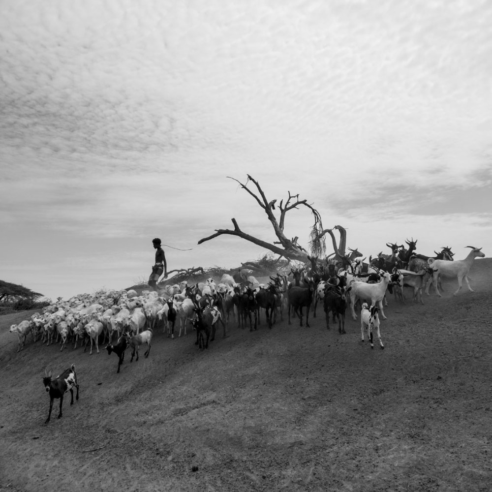 Tsegaye,Layers-of-movement-II,-2017,-digital-photography-(Platinum-Baryta-300-paper),-50x50-cm_light.jpg