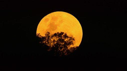 298811966-tramonto-della-luna-luna-piena-arancione-colore-sudafrica.jpg