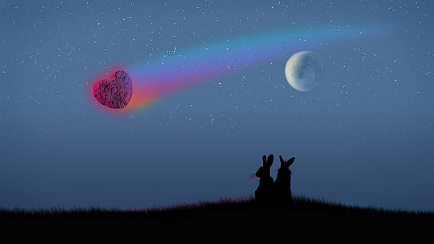 Bunnies at romantic moonlight.