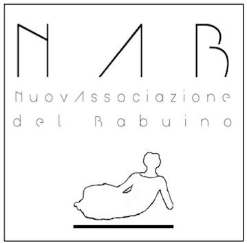 Logo NAB