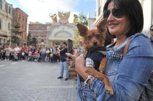 Cinecittà World Parco Pet Friendly