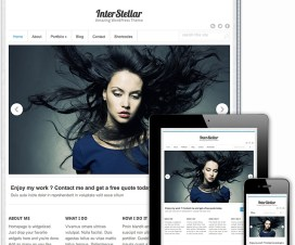 Paid Theme or Free Theme, Which One to Choose? 23