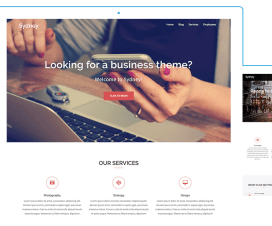 Top 10 Free Responsive Business WordPress Themes 1