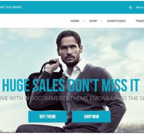 10 WordPress WooCommerce Themes 9