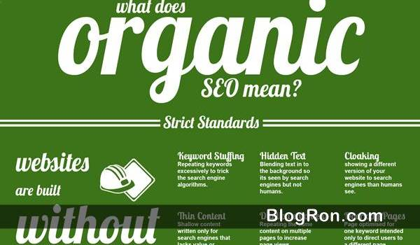 organic seo explained