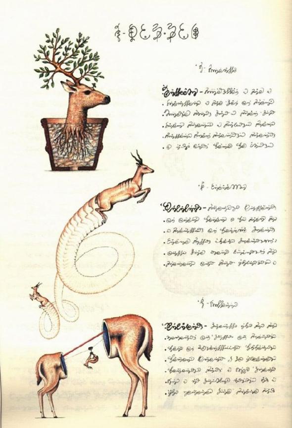 Codex Seraphinianus - 7