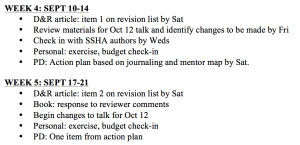 Sample semester plan, courtesy of NCFDD