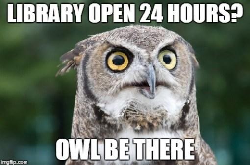 owlmeme