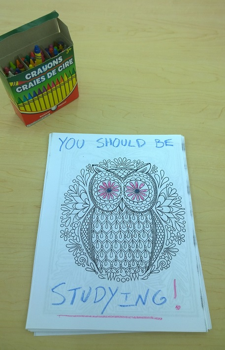 """A colorbook owl saying, """"You should be studying!"""""""